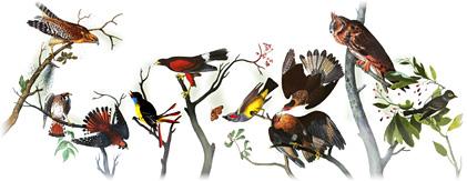 http://www.google.jo/logos/2011/audubon11-hp.jpg